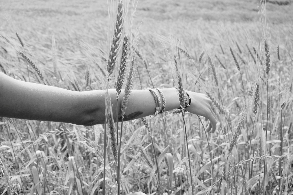 2015_06_Life-of-Pix-free-stock-photos-arm-black-white-wheat-santalla